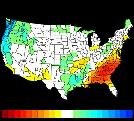 NCDC Precipitation Anomalies